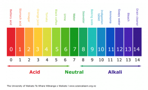 Acids and bases national 5 chemistry